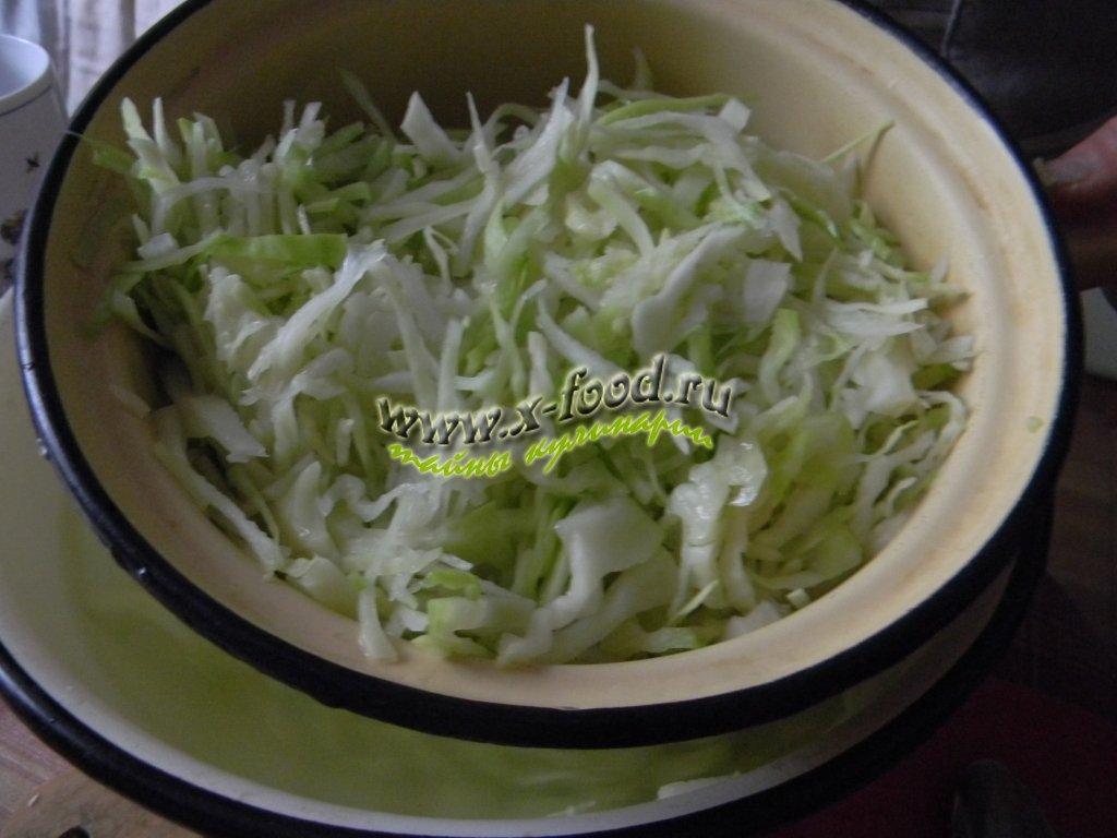 Рецепт тушеной молодой капусты